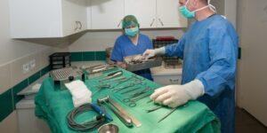 Vétérinaire spécialiste en chirurgie