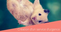 Création d'un service d'urgence exclusivement dédié aux Nouveaux Animaux de Compagnie (NAC) au sein de la Clinique Vétérinaire Alliance.